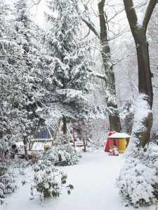 Winter on Venusberg, Bonn